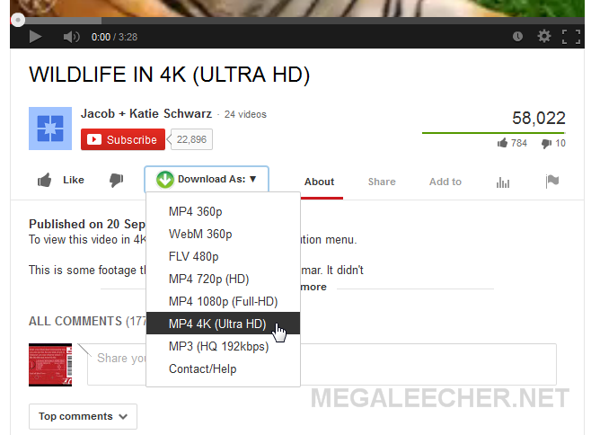4K Video Clip Downloader In Action