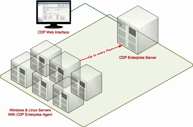 CDP Working