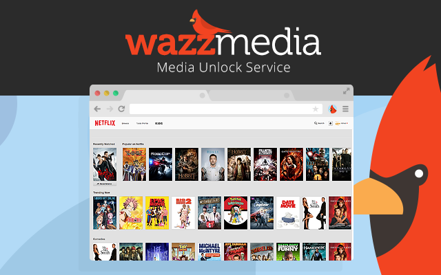 How To Watch TV Online | Megaleecher Net