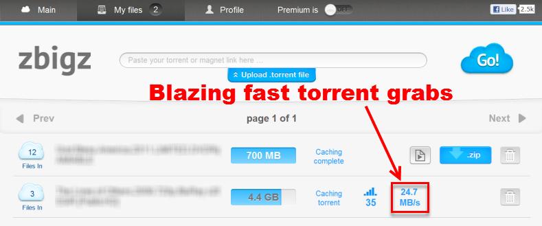 fastest torrent client megaleecher net