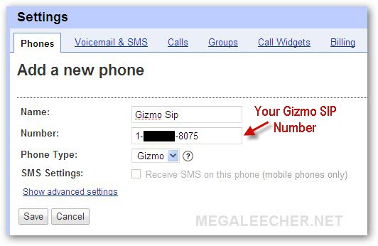 Google Voice Integration with Gizmo