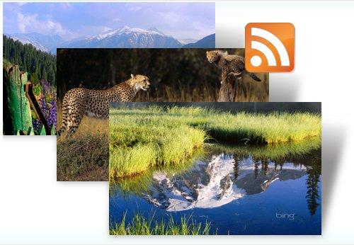 Dynamic Bing Windows 7 Theme