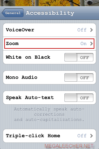 iPod Accessibility Settings