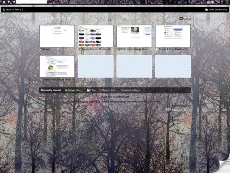 Google Chrome OS GUI