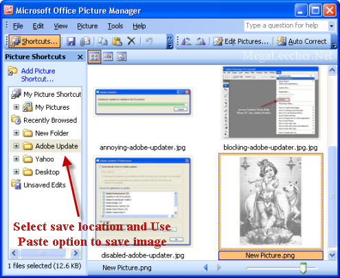 descargar microsoft office picture manager gratis