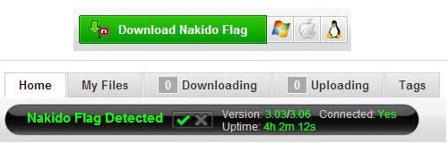 Nakido Flag
