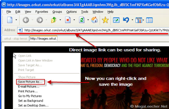 Hack To Save Orkut Images