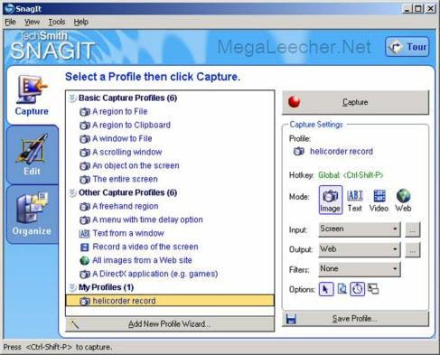 Snag IT Screen Capture
